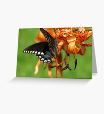 Dance Of Swallowtail and Tiger Lily Greeting Card