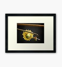 NS The Other Side Of Yellow ONFXA© Framed Print