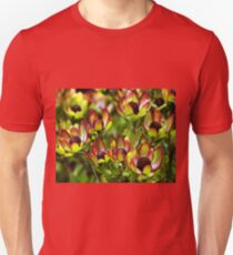 Flowers of the Fynbus, Table Mountain, South Africa T-Shirt