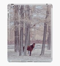 lonely horse in front of snowy winter forest iPad Case/Skin