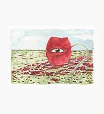In a field of blind poppies, one eye is king Photographic Print