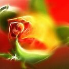 Rose bud - fractalious by George Kypreos