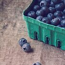 Summer Blueberries no. 2 by Bethany Helzer