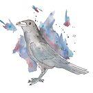 Raven by pokegirl93