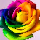 Hybridic Rose #2 by George Kypreos