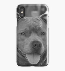 Pitbull in black and white iPhone Case
