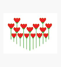 LET YOUR LOVE GROW Photographic Print