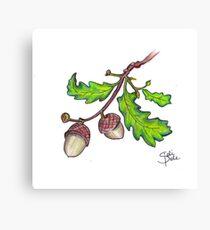 Nut Like Me Canvas Print