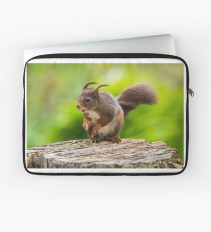 Windswept Red Squirrel Laptop Sleeve