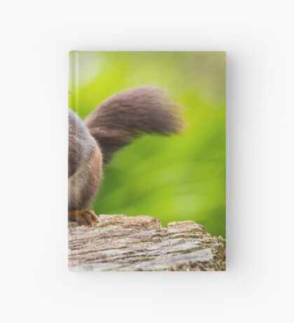 Windswept Red Squirrel Hardcover Journal