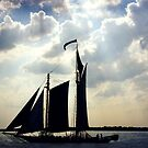 Schooner, New York by Roz McQuillan