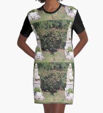 Gracie Graphic T-Shirt Dress