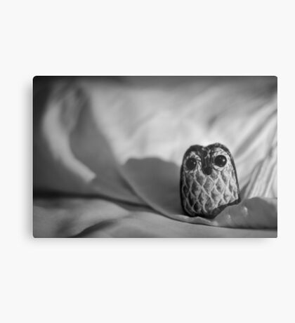 Unintentional Night Owl - The Flightless Fowl Metal Print