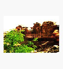 Triassic Park Photographic Print