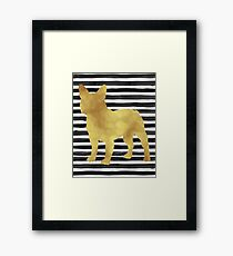 French bulldog stripes and gold Framed Print