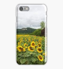 Sunflowers, Dordogne, France iPhone Case/Skin