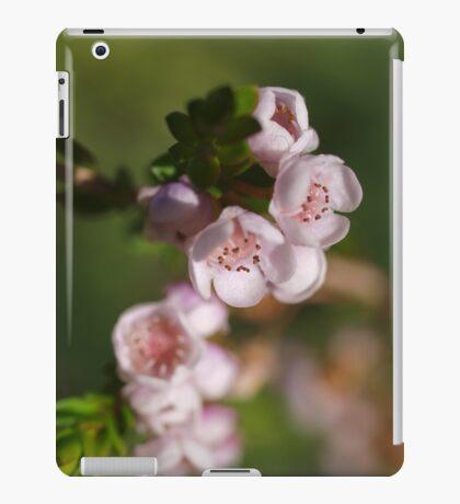 Chamelaucium (2) iPad Case/Skin