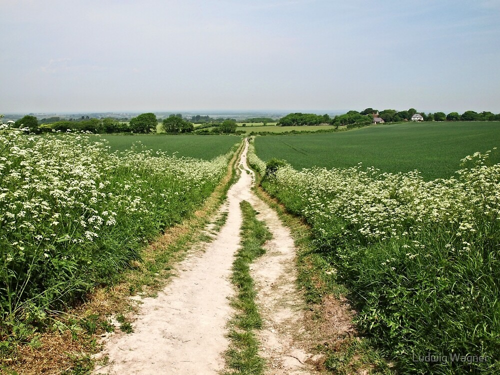 The Road to Windover Hill, East Sussex by Ludwig Wagner