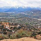 View From Virginia City, Nevada USA by crimsontideguy