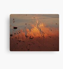 Sunset Sand Canvas Print