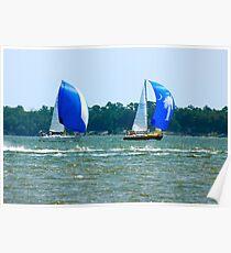 Sail Boats in Charleston Bay Poster
