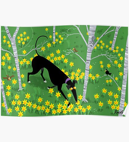 Daffodil Hound Poster