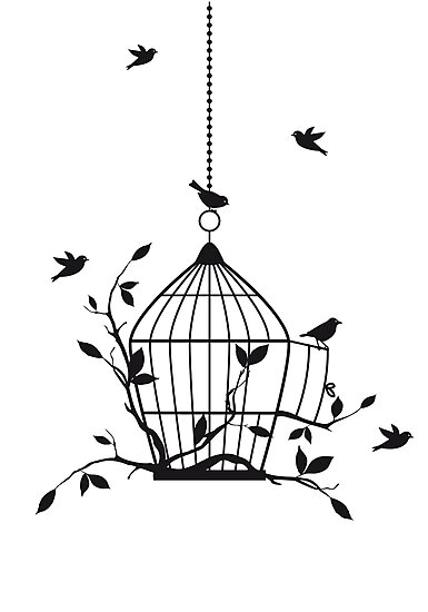 free birds with open birdcage photographic prints by beakraus redbubble. Black Bedroom Furniture Sets. Home Design Ideas