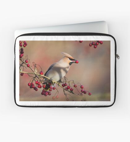 Waxwing with berry Laptop Sleeve