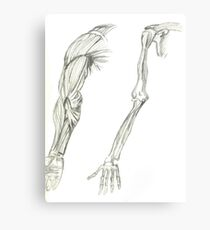 HUMAN ARM  Metal Print