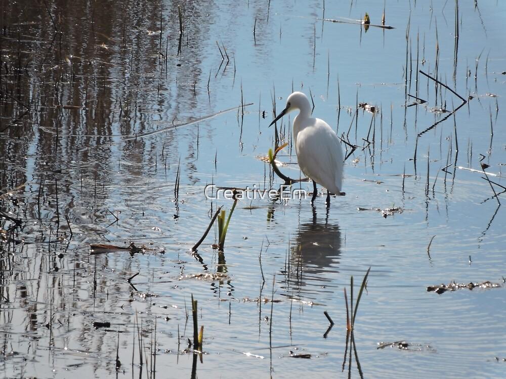 Little Egret: Grace  by CreativeEm