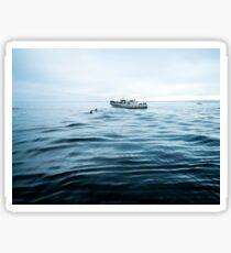 Dolphins in open sea Sticker