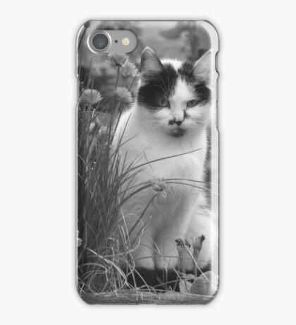 Curiosity iPhone Case/Skin