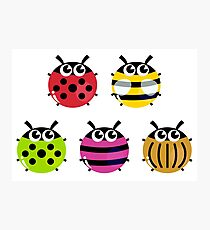 Various bugs collection. Vector cartoon Illustration Photographic Print