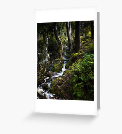 The silence of contemplation Greeting Card
