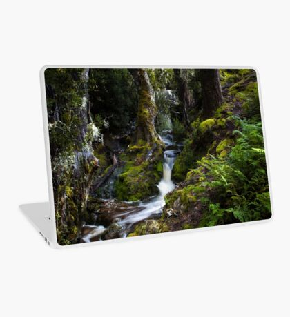 The silence of contemplation Laptop Skin