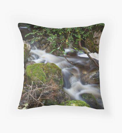 Crater Falls Throw Pillow