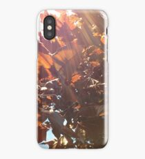 Maple Lens Flare iPhone Case