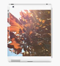 Maple Lens Flare iPad Case/Skin