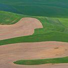 Wheatfield Pattern by Jeff Goulden