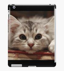 Cat - Pet iPad Case/Skin