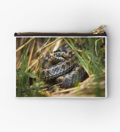 Snake in the Grass Studio Pouch