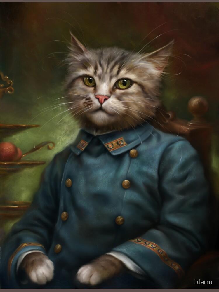 The Hermitage Court Confectioner Apprentice Cat de Ldarro