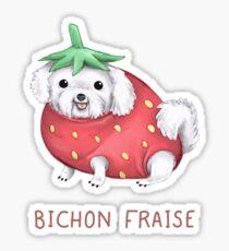 Bichon Fraise Sticker