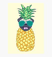 pineapple pug Photographic Print