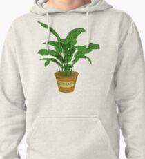 Robert PLANT Pullover Hoodie