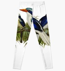 FF - Kingfishers - 1 Leggings