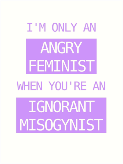Image result for I am only an angry feminist when you're an ignorant misogynist