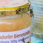 Wasp round a honeypot by Mark Bangert