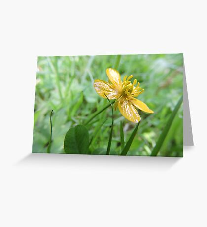 Build Me Up Buttercup Greeting Card