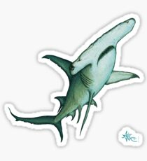 """Great Hammerhead Shark"" by Amber Marine ~ watercolor painting, art © 2016 Sticker"